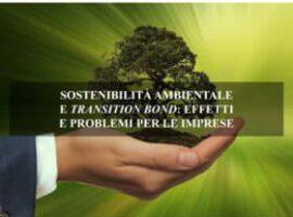 SOSTENIBILITÀ AMBIENTALE E TRANSITION BOND: EFFETTI E PROBLEMI PER LE IMPRESE